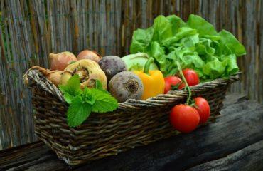 Légumes de saison - récolte